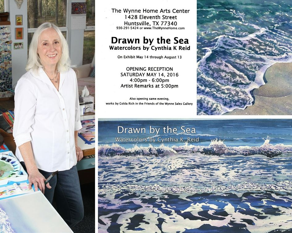 Drawn by the Sea Cynthia K Reid